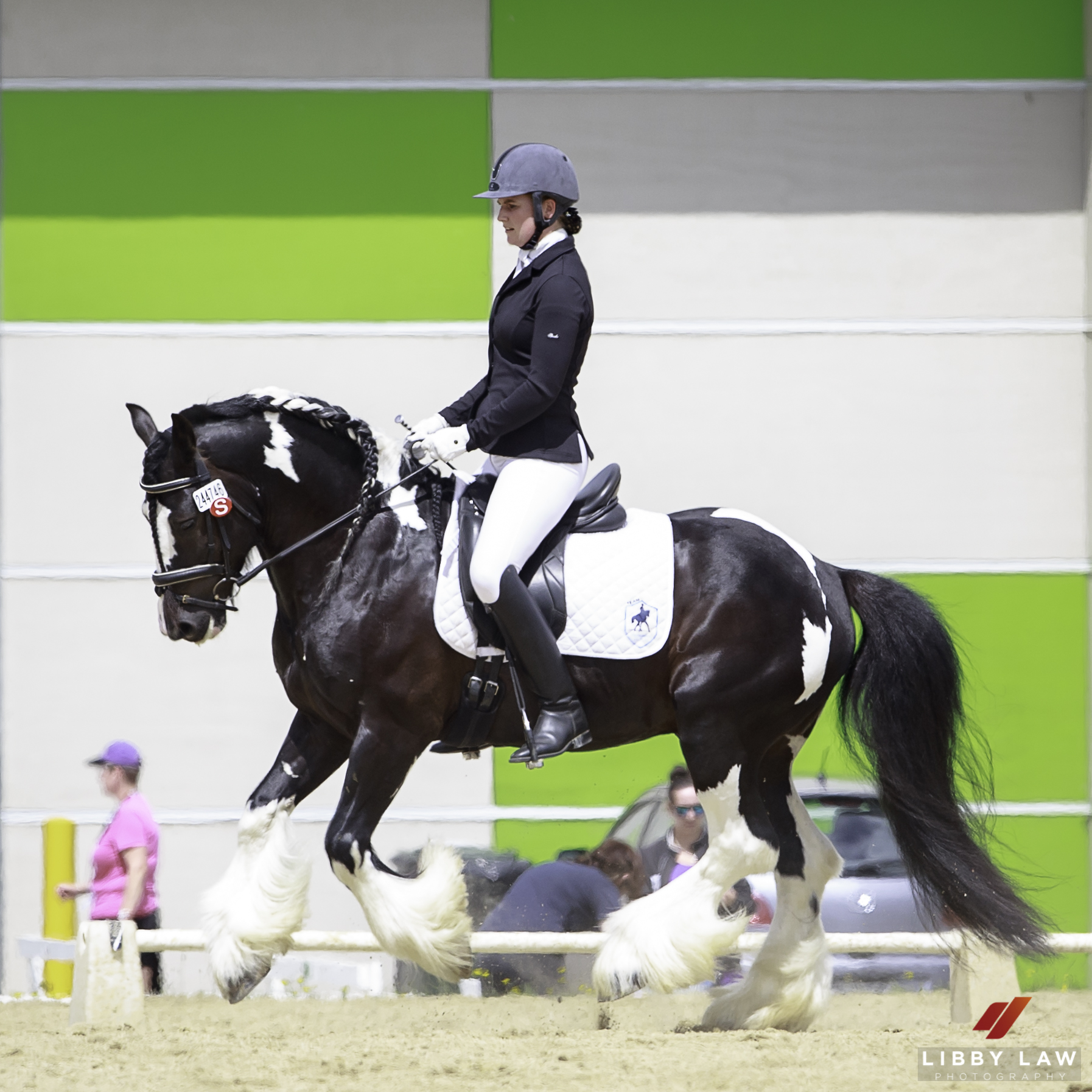 NZL-Chanelle Walsh rides The Lovable Rogue in the Bates Open Championship Level 2 Round 2 - Test 2D. 2017 NZL-Bates NZ Dressage Championships. Manfeild Park, Feilding. Sunday 5 February. Copyright Photo: Libby Law Photography