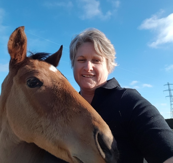 Top Companies Work Together to Champion Equine Nutrition   ESNZ