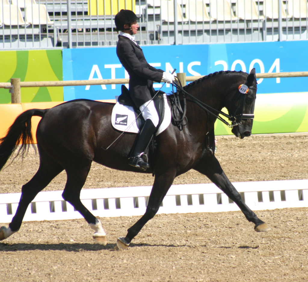 Paralympian 90 Jayne Craike An Equestrian Without Equal