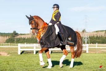 Lucarne Dolley - Ardmore  -  Dressage NZ Medium Tour & Grand Prix Squad